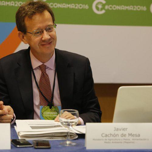 Javier Cachón de Mesa
